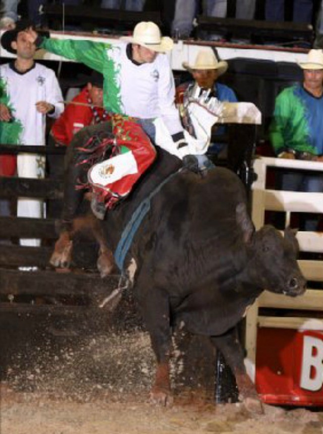 Mexican Bull Rider 2