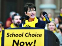 School Choice Now AP