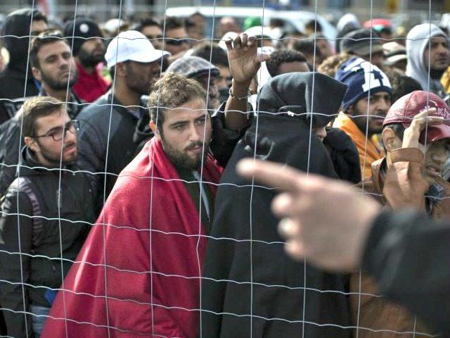 Syrian Refugees MARKO DROBNJAKOVICAP