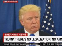 Trump: 'No Path To Legalization,' 'Unless They Leave the Country and Come Back,' We'll 'See What Happens' Once Border's Secured