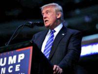 Trump NY Times Evan Vucci AP