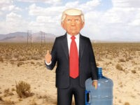 Proceeds From 'Trump Action Figure' to Support Mexican Immigration Charity