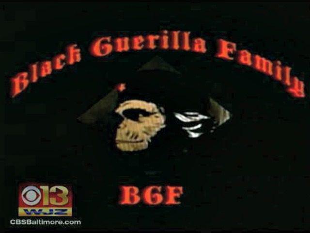 black-guerilla-family-gang