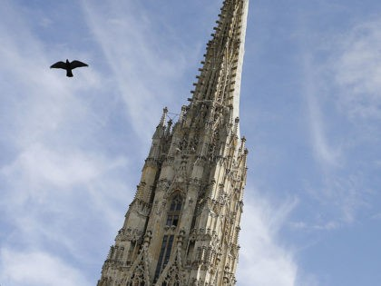 A bird flies near the Stephansdom cathedral (St Stephen's cathedral) in Vienna, Austria on October 4, 2012. AFP PHOTO / ALEXANDER KLEIN (Photo credit should read ALEXANDER KLEIN/AFP/Getty Images)
