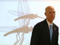 "Florida Governor Rick Scott's office said only that the Florida Department of Health ""is investigating one new individual with non-travel related Zika in Pinellas County"""