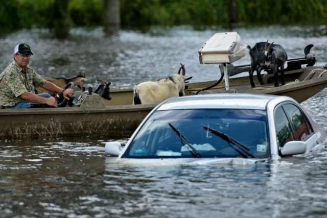 A man navigates a boat of rescued goats past a partially submerged car after flooding on August 16, 2016 in Gonzales, Louisiana