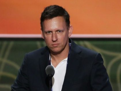 """Peter Thiel, a Silicon Valley titan, acknowledged he helped fund litigation against Gawker, with whom he has feuded for years since it """"outed"""" him as a homosexual"""