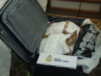 In this photo released by Australia Boarder Force, a suitcase filled with cocaine after it was seized by customs onboard the MS Sea Princess in Sydney, Australia, Sunday, Aug. 28, 2016. Three Canadian cruise ship passengers were charged with drug smuggling Monday, Aug. 29, after Sydney police allegedly found 95 …