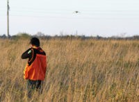 FILE - In this Oct. 7, 2012 file photo, 14-year-old Collin Cleveland, of Montrose, S.D., takes aim at a pheasant during the state's annual youth hunt on land near Tyndall, S.D. A South Dakota Game, Fish and Parks official says he's optimistic a mild winter and spring will help boost …