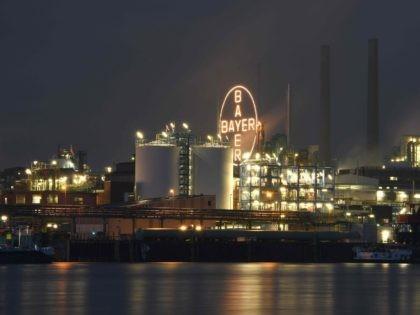Bayer (Volker Hartmann / Getty)