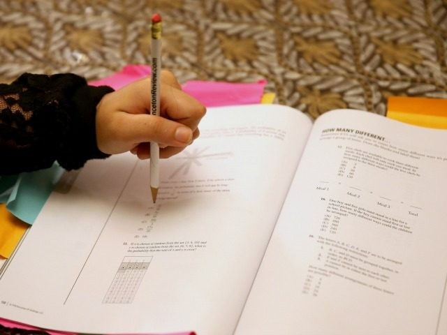Suzane Nazir uses a Princeton Review SAT Preparation book to study for the test on March 6, 2014 in Pembroke Pines, Florida.