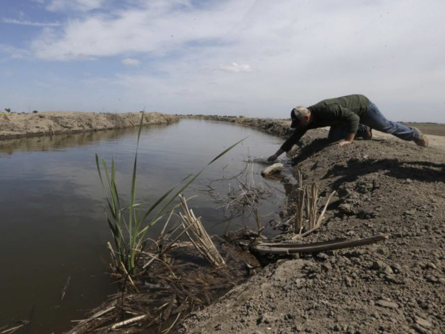 California proposes more water for fish less for farms for San joaquin river fishing