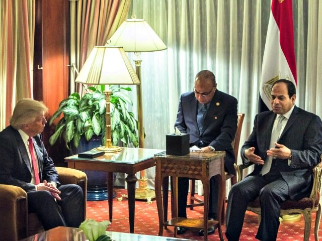Image result for trump and el sisi
