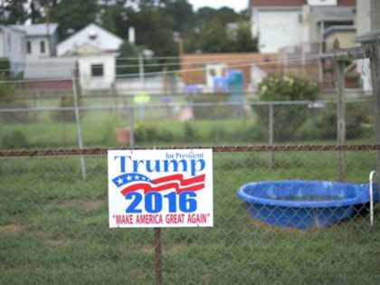 Trump Yard Sign Mark MakelaGetty