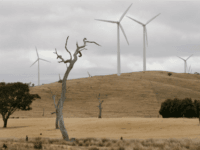 Coming to a Town Near You: The Great Green Energy Disaster