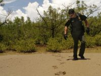 U.S. Border Patrol agent Glenn Torres checks footprints while on patrol through the southwestern town of Boqueron, Puerto Rico, Thursday, July 29, 2004. Thousands of Dominicans risk their lives on rough seas to join a huge wave of illegal migrants trying to reach the U.S. Caribbean territory of Puerto Rico …
