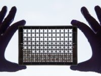 A scientist examining cells in a 96-well plate. These plates allow scientists to look at lots of cells at the same time and directly compare cells that have or have not been treated with a drug, at the Cancer Research UK Cambridge Institute on December 9, 2014 in Cambridge, England. …