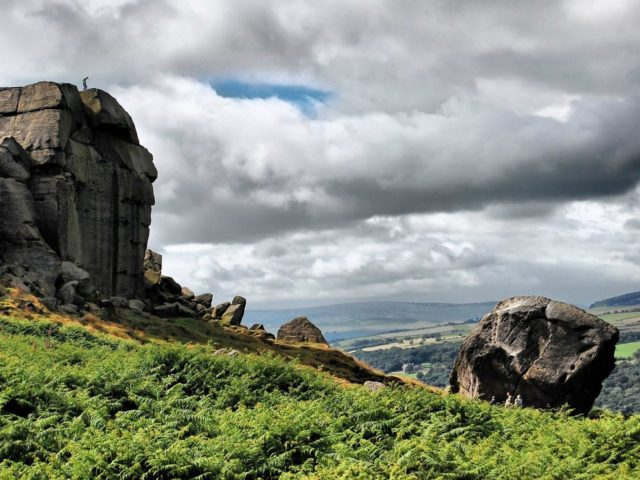 Calf Top Yorkshire