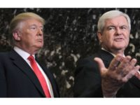 Donald and newt AP