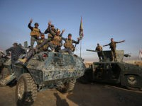 Iraqi forces flash the sign for victory as they deploy in the area of al-Shourah, some 45 kms south of Mosul, as they advance towards the city to retake it from the Islamic State (IS) group jihadists, on October 17, 2016. Iraqi Prime Minister Haider al-Abadi announced earlier in the …