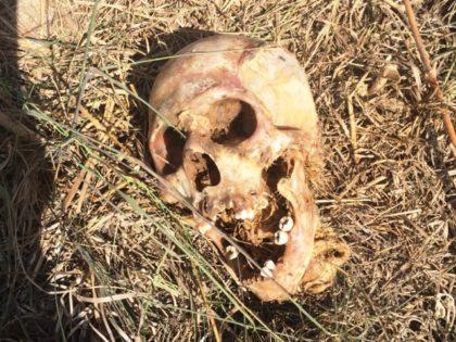 Dead Migrants' Corpses Overwhelm Texas County