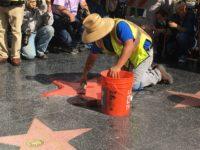 Trump Star (Adelle Nazarian / Breitbart News)