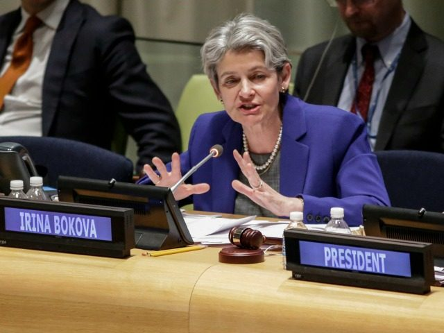 Irina Bokova, Director-General of UNESCO, speaks during the first-ever hearings of candidates seeking to become the next secretary-general at UN headquarters in New York on April 12, 2016. Over the next three days, eight contenders are expected to take the podium before the General Assembly's 193 nations to lay out …
