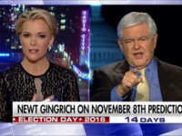 Washington Post: Megyn Kelly Showed 'Badassery' in Interview with Newt Gingrich