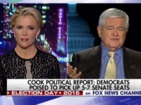 Gingrich Slams Megyn Kelly for Treatment of Trump — 'You Are Fascinated With Sex and You Don't Care About Public Policy'