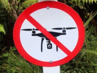 No Drones Allowed (Arturo Pardavila III / Flickr / CC / Cropped)