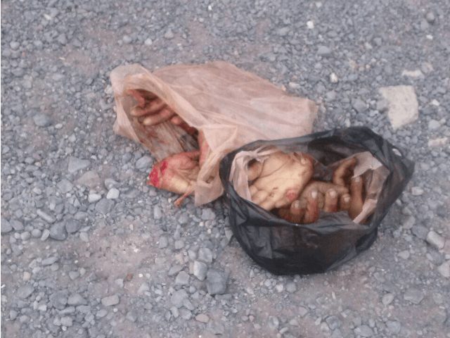 Thieves severed hands 2