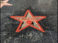 Trump Walk of Fame Star Smasher: 'If I Must Go to Jail, I Will'