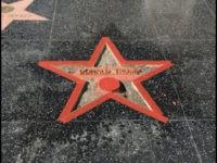 TrumpStar