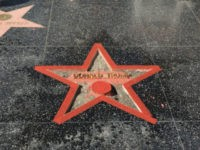 Trump Walk of Fame Star Smasher Arrested: 'I Was Just So Fed Up'