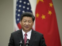 "By Michelle Nichols | UNITED NATIONS Chinese President Xi Jinping announced on Saturday that Beijing will establish an assistance fund with an initial pledge of $2 billion to help developing countries implement a sweeping global sustainable development agenda over the next 15 years. "" China will continue to increase investment …"