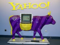 Yahoo! cow (Franco Folini / Flickr / CC / Cropped)