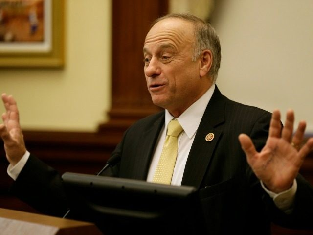 U.S. Rep. Steve King speaks during a hearing to criticize a proposal from the Environmental Protection Agency to reduce the amount of ethanol that must be blended with gasoline in 2014, Thursday, Jan. 23, 2014, in Des Moines, Iowa. The EPA in November proposed reducing by nearly 3 billion gallons …