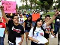 DACA immigrant-drivers-licenses AP