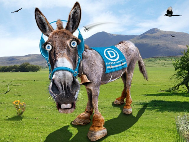 Democrats-Donkey-Flickr
