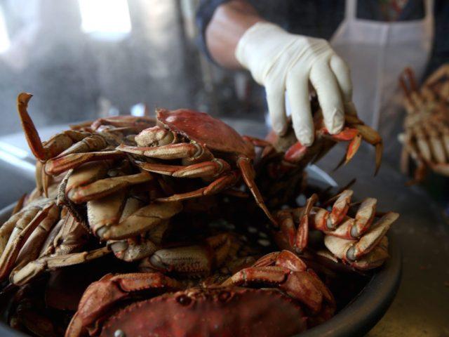 Dungeness crab (Justin Sullivan / Getty)