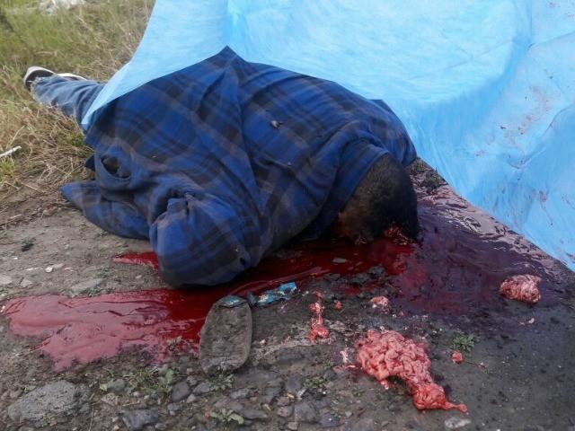 MTY murder 4