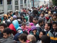 Over 200,000 Undocumented Migrants in Germany Were 'Born' on January 1st