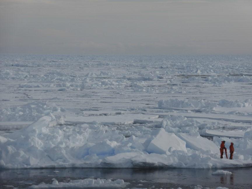 Delingpole: NOAA Caught Lying About Arctic Sea Ice