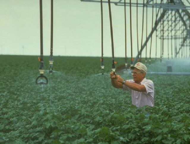 Farmer Bill Buckman adjusting his water-efficient ctr-pivot irrigation system in cotton field, re water shortage & local efforts to conserve. (Photo by Shelly Katz/The LIFE Images Collection/Getty Images)