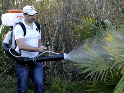 FILE- In this Feb. 10, 2016, photo, Darryl Nevins, sprays a backyard to control mosquitoes, in Houston. Texas on Monday, Nov. 28, 2016, reported its first case of Zika virus that likely came from a mosquito bite within the state. (AP Photo/Pat Sullivan, File)