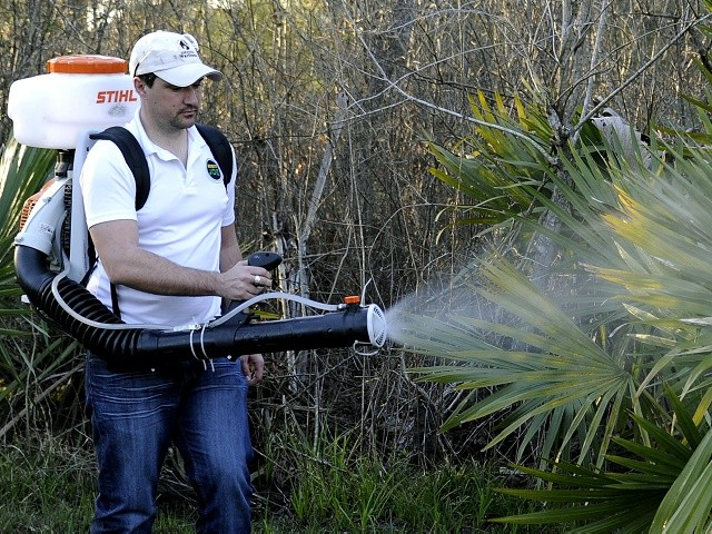 More Zika Reported in Texas as 2016 Winds Down