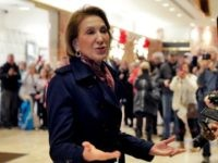 Fiorina: Daniels, Avenatti, and Trump Are 'All Birds of Feather' – 'They're All in Show Business'