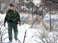 Border Patrol winter