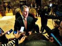 Sen. David Perdue, R-Ga., talks with reporters after meeting with President-elect Donald Trump at Trump Tower, Friday, Dec. 2, 2016, in New York. (AP Photo/Evan Vucci)