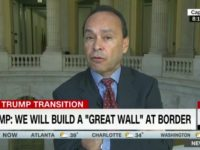 Luis Gutierrez: I'll Help Build 'Offensive' Border Wall for DACA Fix